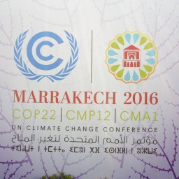 COP22: Marrakech Reflections